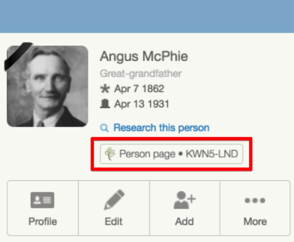 FamilySearch person page link for FamilySearch trees, on a MyHeritage online tree panel