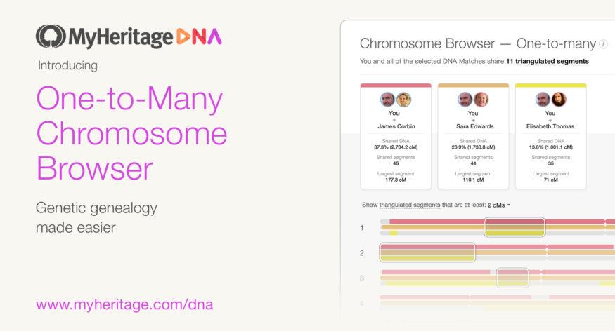kromosomleser