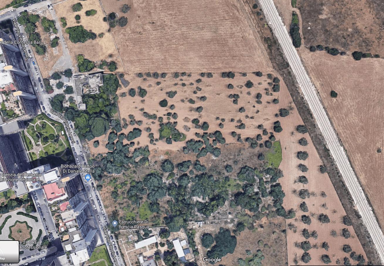 Google Earth-bilde av skogen i Bari, Italia hvor Vasile lette