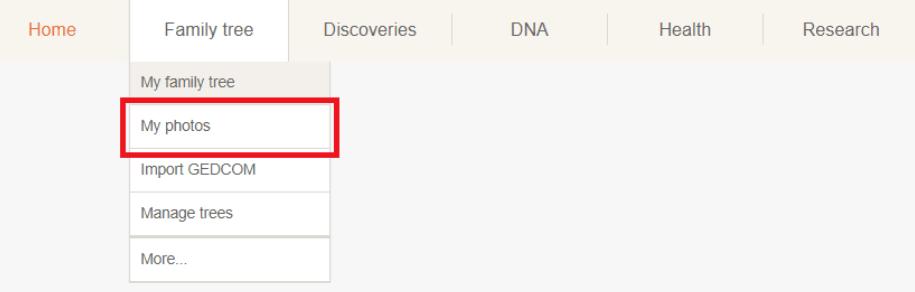Przechodzenie do Twoich zdjęć na MyHeritage