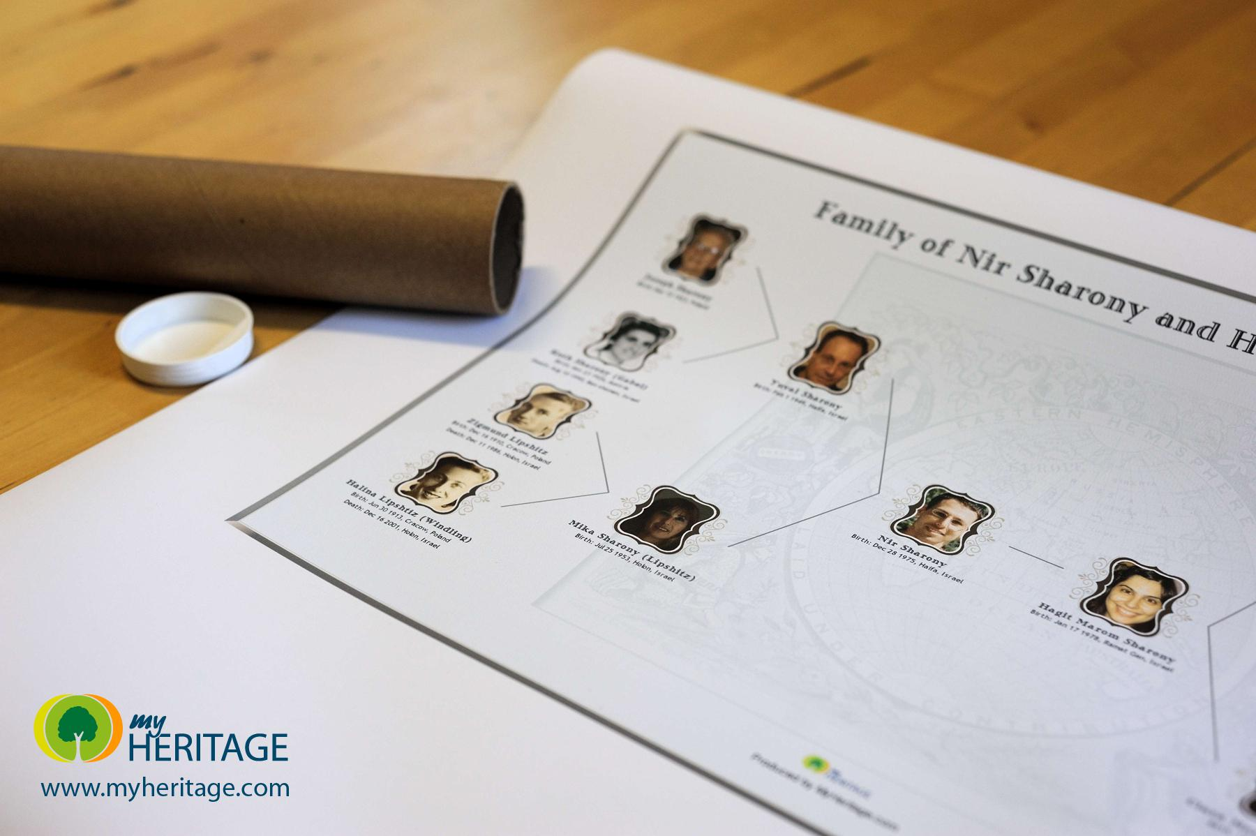 Create a Beautiful Family Tree Chart Online & Print it as a Poster ...